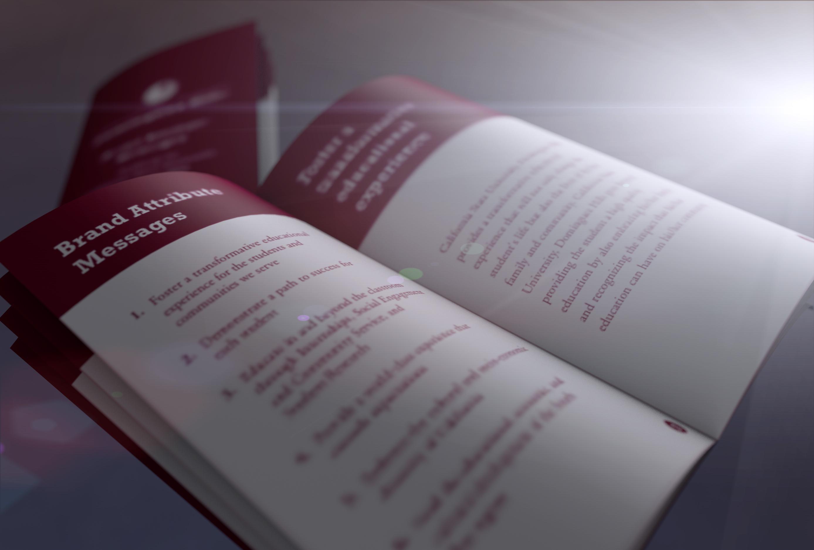 csudh-brand-book-1